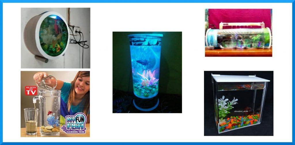 jenis aquarium mini terbaik bentuk unik