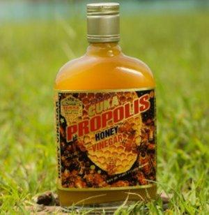 cuka madu propolis rimba raya