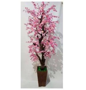 bonsai sakura korea musim semi