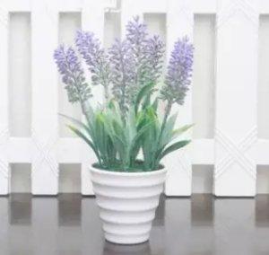 buket bunga lavender plastik