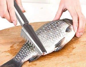 inone pengupas sisik ikan kuat