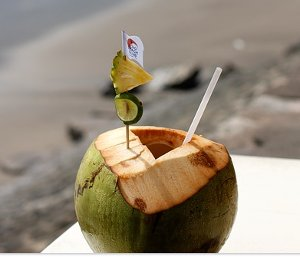 kelapa muda segar murni