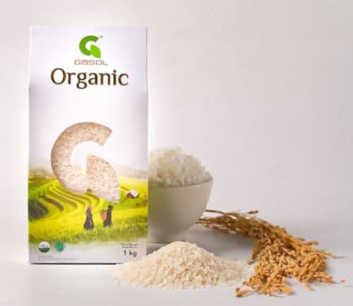 varietas padi putih