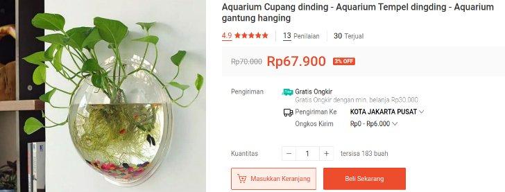Aquarium Cupang Dinding