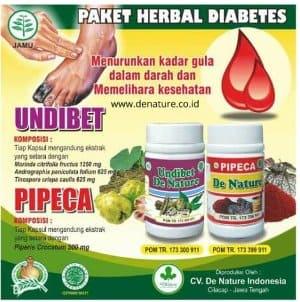 Obat Diabetes de nature Undibet dan Pipeca