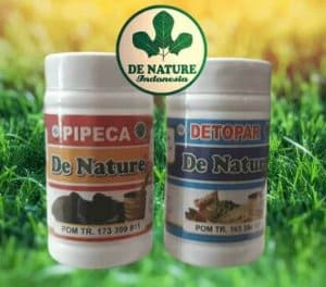 obat tbc herbal detopar pipeca