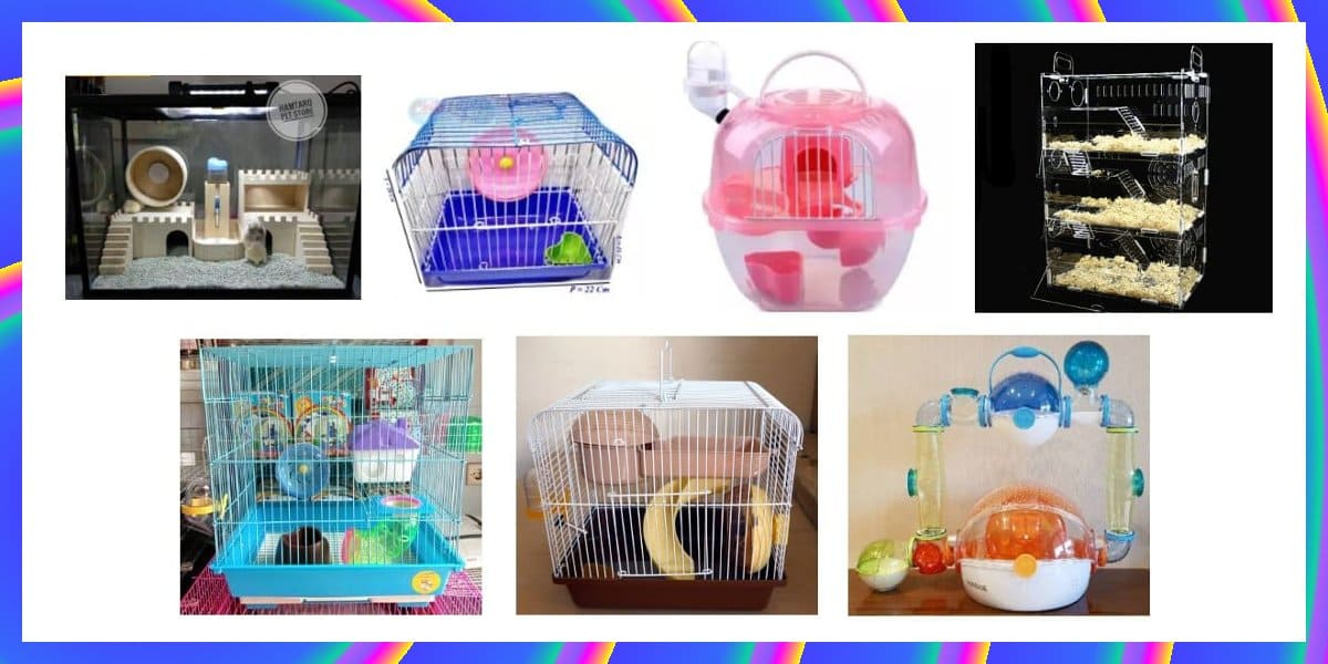 kandang hamster terbaik mewah dan biasa