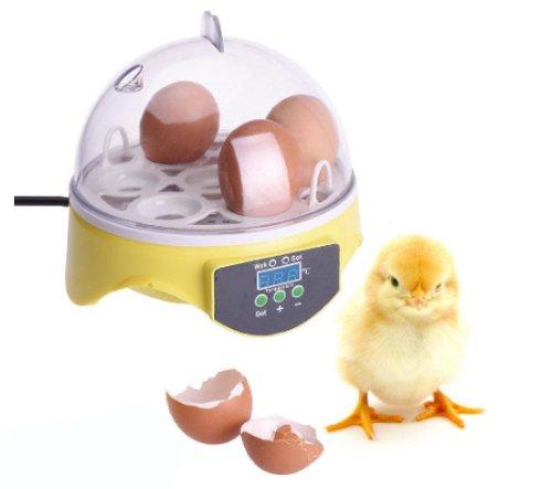 kelebihan mesin penetas telur