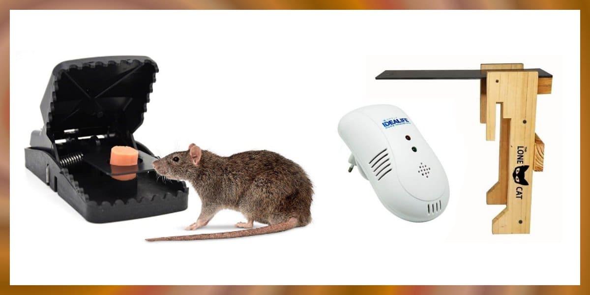 jebakan tikus terbaik terlaris di shopee