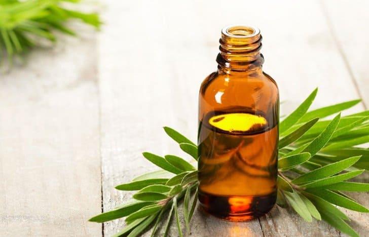 manfaat tea tree oil