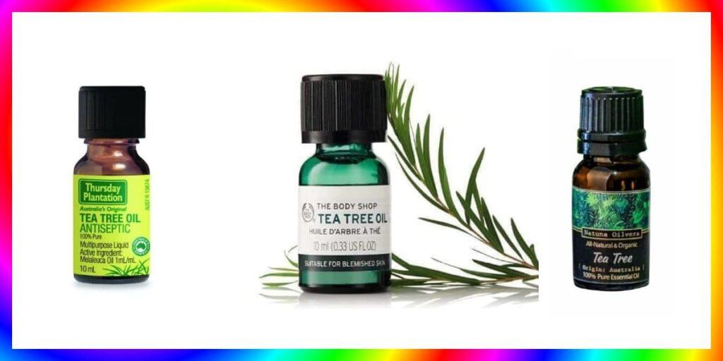tea tree oil terbaik kualitas asli
