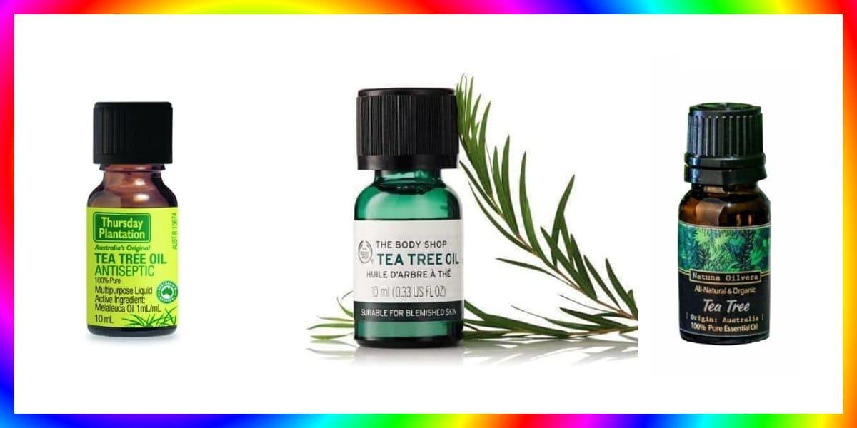 7 Tea Tree Oil Terbaik Untuk Kecantikan dan Pijat