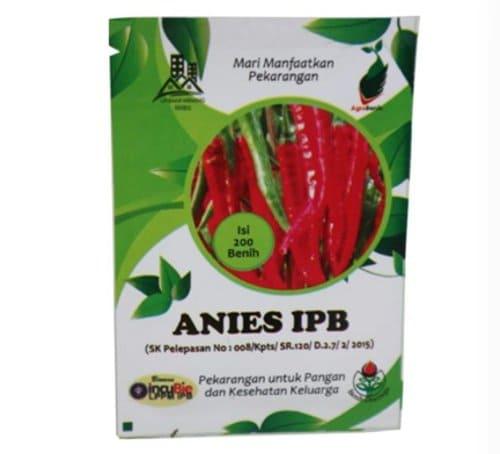 Benih Cabai Merah Besar Anies IPB