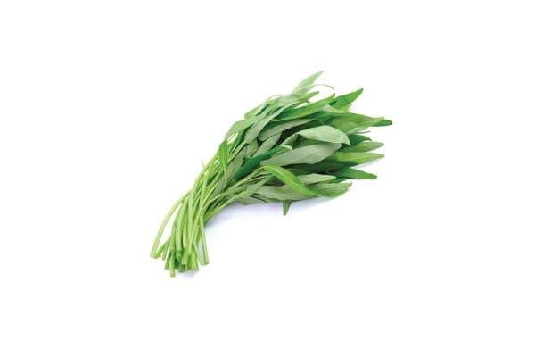 benih sayuran kangkung terbaik