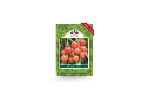 benih tomat buah bareto f1 cap panah merah