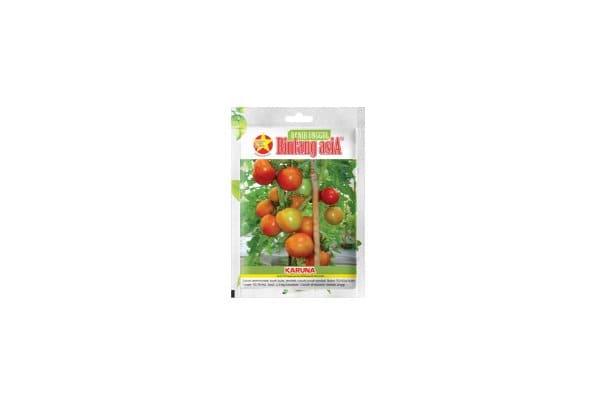 benih tomat sayur karuna bintang asia