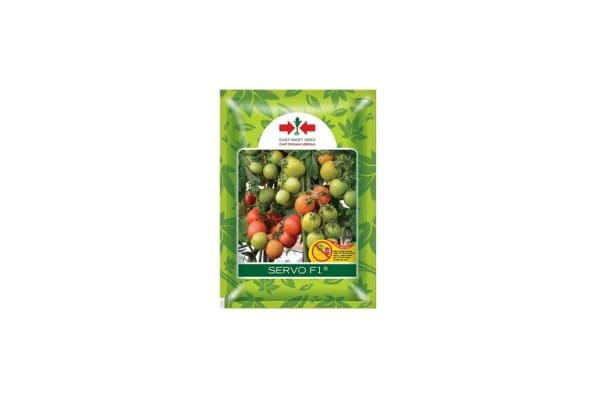 tomat servo f1